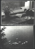 Cca 1970 Vegyes Fotó Tétel: Csendélet, életképek, Utazás, Stb., összesen 12 Db Nagyméretű Fotó, Egy Részük Hátulján Feli - Altre Collezioni