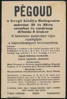 1913 Pégoud Repülős Budapesten. Hirdetmény, Plakát, Röplap 16x23 Cm - Vecchi Documenti