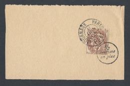 N° Y/T 110 Type Blanc Sur Fragment Bande Journal Oblitéré 11/6/1903 Journaux PP 67 MP 1/2 Centime En Plus - 1877-1920: Période Semi Moderne
