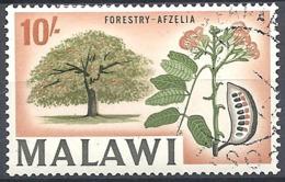 Malawi, 1964 Country Views- Forestry - Afzelia, 10sh  Multicol  # S.G. 226 - Michel 13 - Scott 16  USED - Malawi (1964-...)