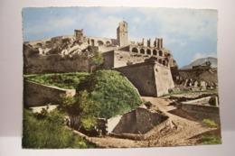 SISTERON   - La  Citadelle   - ( Pas De Reflet Sur L'original ) - Sisteron
