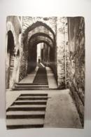 SISTERON   - Rue Du  Glissoir     - ( Pas De Reflet Sur L'original ) - Sisteron