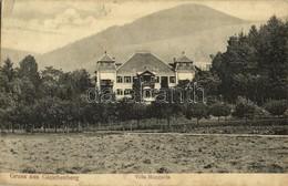 * T2/T3 1915 Bad Gleichenberg, Villa Hungaria (fl) - Francobolli