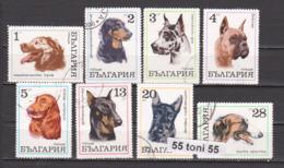 1970 Fauna DOGS - HUNDE Mi 2021/28  6v.-used(O)  Bulgaria/Bulgarie - Perros