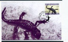 A30986)Reptilien: Bosnien-Her. 128 Maximumkarte - Non Classificati