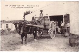 LA BREE-LES BAINS - Rentrée Au Chai D'une Troupe De Vendangeurs - Otros Municipios