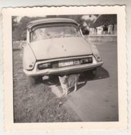 Citroën - Chat - Photo 8.5 X 9 Cm - Cars