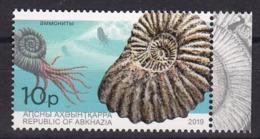 Abkhazia 2019 Marine Fauna Ammonites 1v MNH - Meereswelt