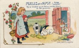 Chromo Perles Du Japon Lapin - Altri