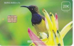 ISN-304 TARJETA DE ESPAÑA DE ISERN DE LA SERIE AVES Nº14 (BIRD-PAJARO) - Spagna