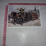 C-78185 GRUSS VOM OKTOBERFEST CARRO CAVALLO CAVALLI BIRRA BIER ILLUSTRATA - Künstlerkarten
