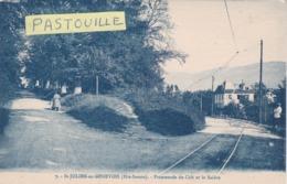 CPA :  14 X 9  -  7.  -  St-JULIEN-en-GENEVOIS  -  Promenade Du Crêt  Et Le Salève - Saint-Julien-en-Genevois