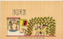Vintage In Ancient Egypt And Pressing Wine - Formato Piccolo Viaggiata – E 14 - Cartoline