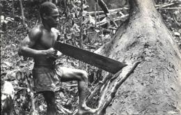 CPA-CONGO-1955-CONGO-TRONCONNAGE De L OKOUME-TBE - French Congo - Other