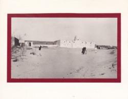 TUNISIE NEFTA 1923  Photo Amateur Format Environ 5 X 3,5 Cm - Luoghi
