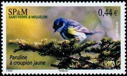 ST PIERRE ET MIQUELON SPM 2007 Bird Yellow-Rumped Warbler Birds Animals Fauna MNH - Ungebraucht