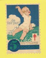 Timbre Antituberculeux Grand Format Dit Timbre Auto-vitrine à 5 Francs De L'Air Pur Enfant Assis Dans L'herbe Bras Levé - Commemorative Labels