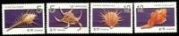 Taiwan 2008 Seashell Stamps (II) Shell Marine Life Fauna - Unused Stamps