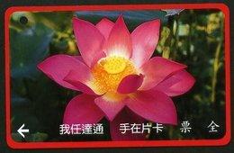 Taiwan Early Bus Ticket Lotus Flower (LA0036) - Cars
