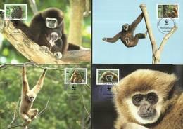 Laos 2008 Mi 2062-2065  Max Card ( MAX ZS8 LAO2062-2065 ) - Monkeys