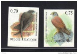 BELGIQUE  BUZIN COB N° 3608/9 ND . ** MNH (3T156) - 1985-.. Birds (Buzin)