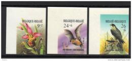 BELGIQUE BUZIN COB N° 2244/6 ND . ** MNH (3T180) - 1985-.. Birds (Buzin)