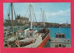 Modern Post Card Of Palma,Mallorca,Islas Baleares,Spain,A24. - Mallorca
