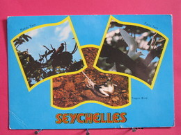 Seychelles - Oiseaux - 3 Jolis Timbres - 1975 - Scans Recto-verso - Seychelles