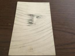 Illustrateur à Identifier - Andere Illustrators