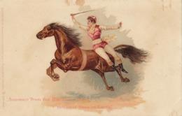 Carte Postale Cirque Barnum Et Bailey - Cirque