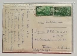 Cartolina Illustrata Da Roma Per Vedrana Di Budrio (BO) - 11/09/1948 - San Pietro