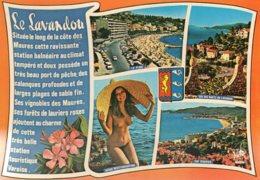 B60965 Cpsm Le Lavandou - France