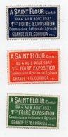 Erinnophilie Vignette A Saint Flour Cantal 1937 Foire Exposition Commerciale Artisanale Agricole Les 3 Vignettes - Erinnofilia