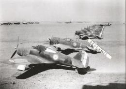 PHOTO AVION CURTISS H75 EN ALIGNEMENT N°183 , 133 ..... 17X11CM  ARCHIVE ECPA - Aviazione