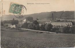 01 MONTLUEL  Usine De Tissage De Soierie - Montluel