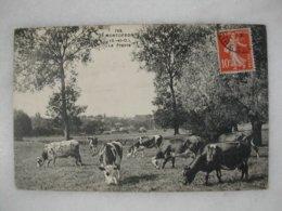 MONTGERON - La Prairie (avec De Nombreuses Vaches) - Montgeron