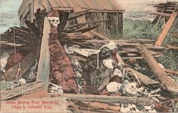 INDIEN - INDIAN - Indian Burying Place Memalosse Island In Columbia River - Etats-Unis
