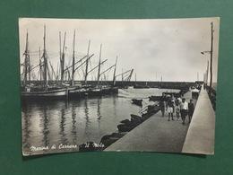 Cartolina Marina Di Carrara - Il Molo - 1956 - Massa