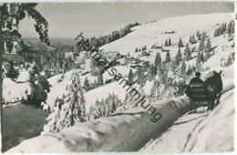 Rigi-Kaltbad - Schlitten - SZ Schwyz