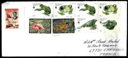 LETTRE EN PROVENANCE D'HAITI - - Frogs