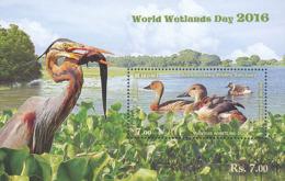 Sri Lanka 2016. Canard. Duck.: Dendrocygne Fauve - Canards