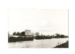 Mechelen A/d Maas  -  Witte Zandwasserij. - Maasmechelen
