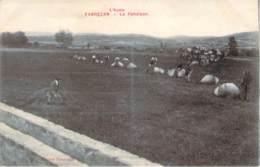 11 - Fabrezan - La Fenaison (foin, Agriculture) - France