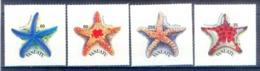 O97- Vanuatu 2004 Starfish Marine Life Fauna. - Marine Life