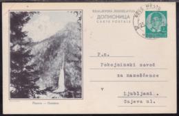 Yugoslavia, Kingdom, King Peter, 1 Din., Illustrated Postcard, Planica, Mailed 1938 - 1931-1941 Königreich Jugoslawien