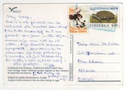 "Beaux Timbres , Stamps  ""  Tortue ""  Sur Cp , Carte , Postcard Du 31/07/2000 - Costa Rica"