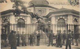 PARIS - Au Jardin Des Plantes - Le Grand Eléphant - Parchi, Giardini