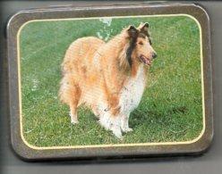 Tabaksdoos Boite De  Tabac Tabak  Reclame Rizla Publiciteit Afb.  Hond  Chien Dog Hund  Collie Lassie - Boites à Tabac Vides