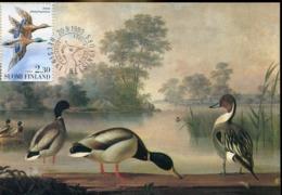 49111  Finland, Maximum 1993,  Birds, Mallard,  Colvert - Maximum Cards & Covers