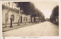 Algérie - L'Arba - Postes Et Télégraphes - Algerien